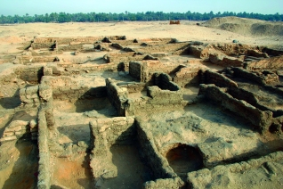 These small mud-brick houses provided the typical domestic environment for most of Amarna's residents. This was the first neighbourhood-level clearance of Amarna housing undertaken in modern times.